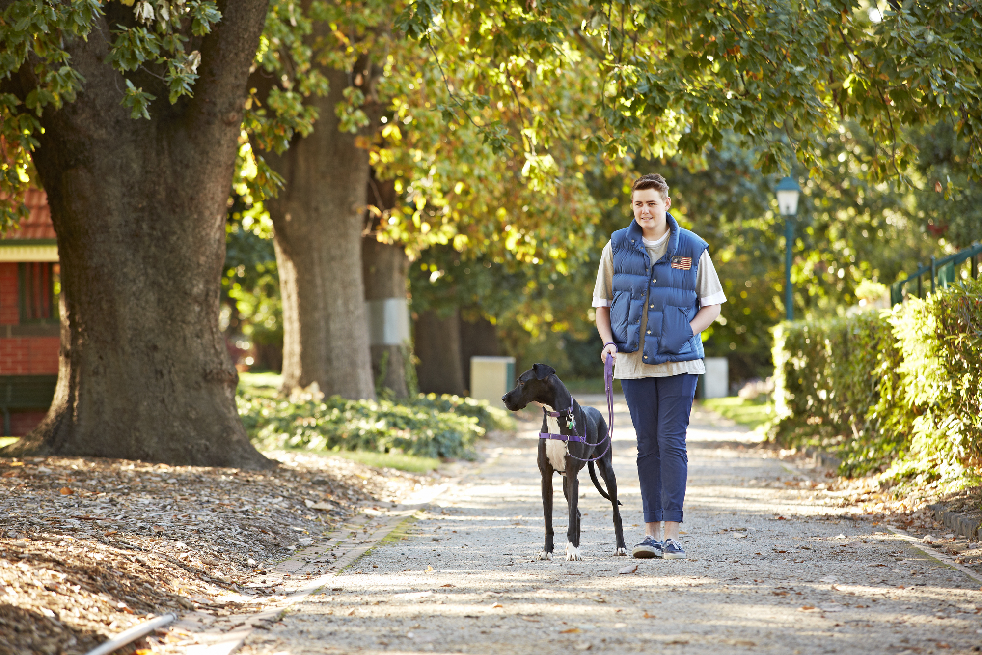 Dog Walkers in Glen Iris & surrounds