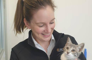 We Are Feline Friendly Accredited by the ISFM | Glen Iris Vet