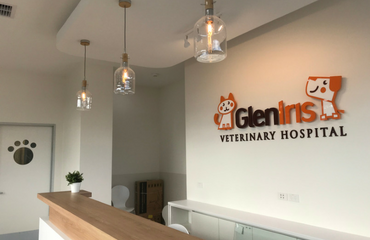 Our New Hospital Opens Soon | Glen Iris Vet